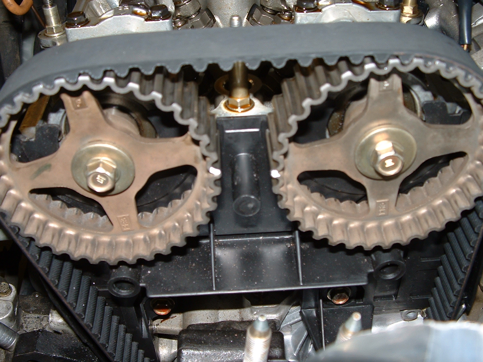 Timing Belt Chaine Strap Reparation Prix Alxmic